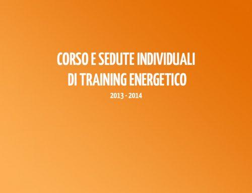 Corso e sedute individuali di Training Energetico